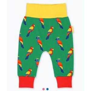 Organic Cotton Green Yoga Pants Parrot Print